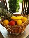 dny tropickeho ovoce rijen 2014